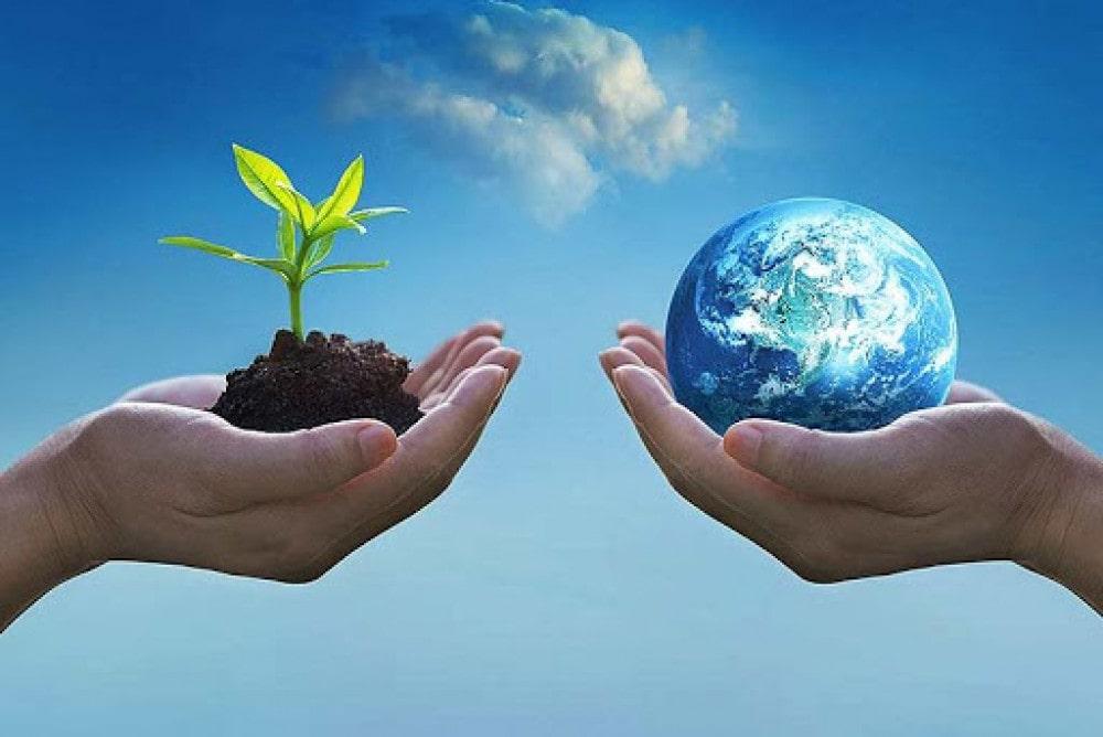 विश्व वातावरण दिवसका अवसरमा तुलसी खेती image